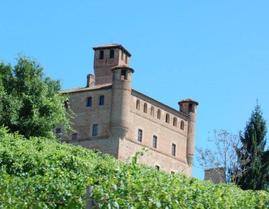 Welcome Piemonte, Experience, Langhe, Piemonte, visita guidata