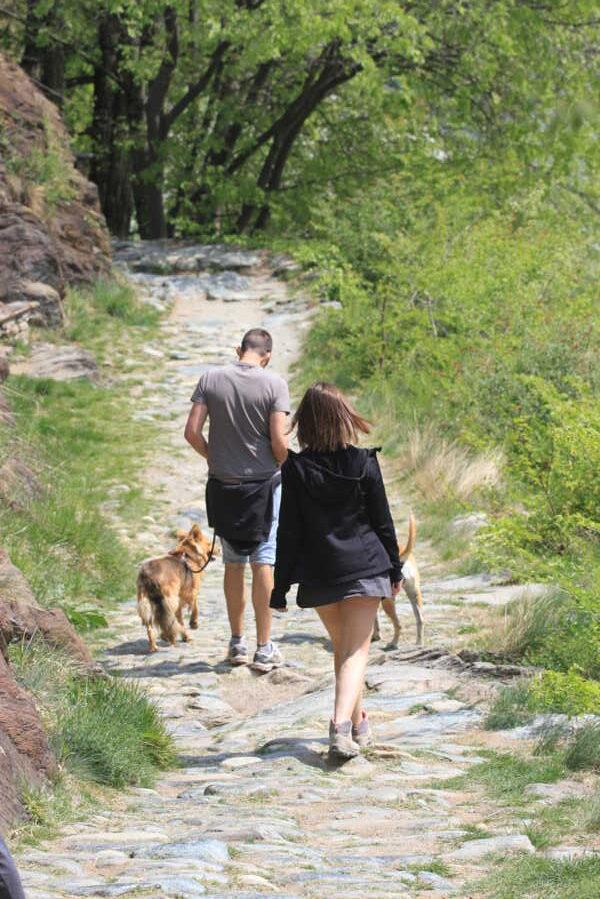 Welcome Piemonte, Experience, Peridotiti, Colle del Lys, Torino, Piemonte