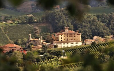 Langhe del Barolo.. share the wonder!