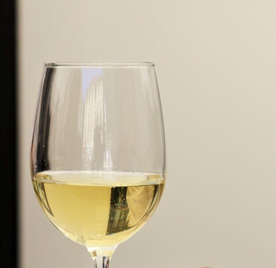 Welcome Piemonte, Experience, Erbaluce, Vino del Canavese, Torino, Piemonte