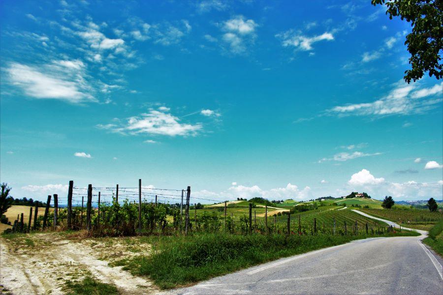 Welcome Piemonte, Experience, Monferrato, Asti, Piemonte, visita guidata