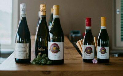 Gold Wine Experience nelle Colline del Moscato