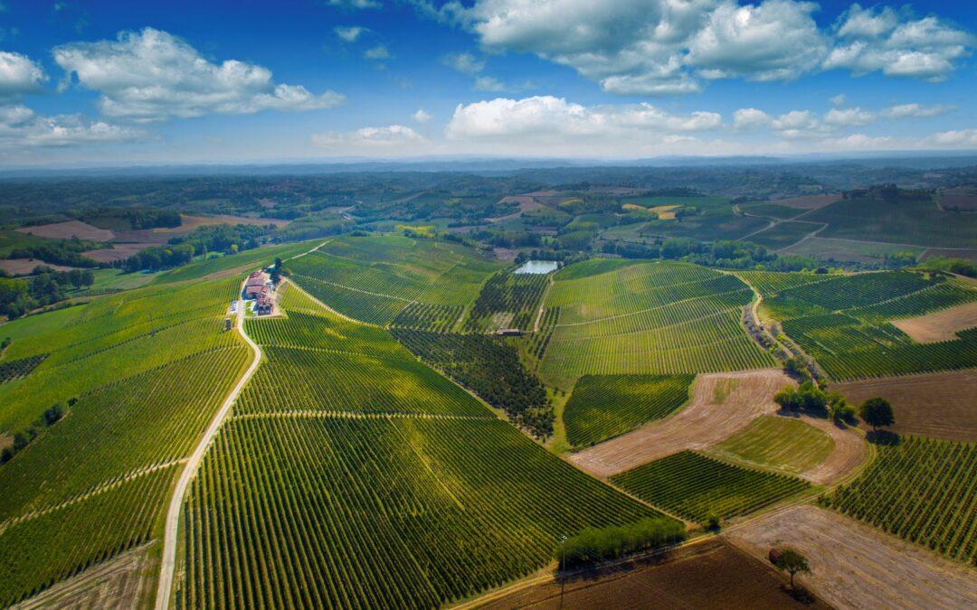 Wine Experience nelle Terre del Ruchè