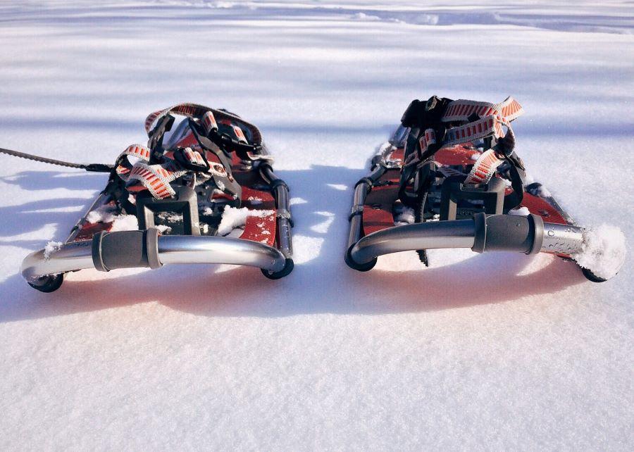 Welcome Piemonte, Experience, Snow Adventure, Ciaspolate in montagna, Piemonte
