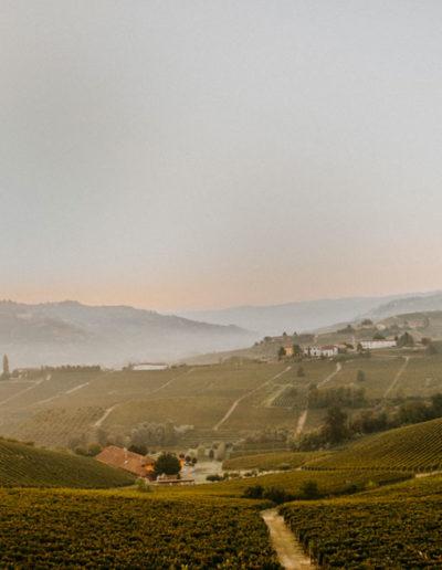 Vigneti Matteo Soria Winery, Castiglione Tinella, Langhe, Piemonte