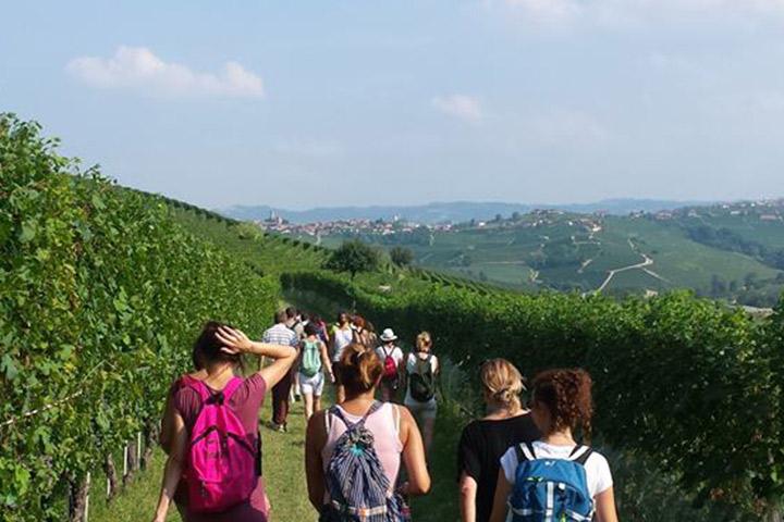 Green tour nelle Langhe, Piemonte